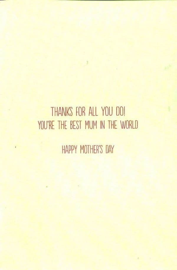 .To A Fantastic Mum Me To You Mother's Day Card